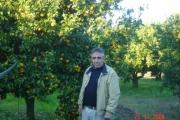 Koutsodimos farm