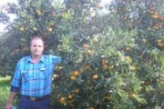 Αγρόκτημα Σαλτού